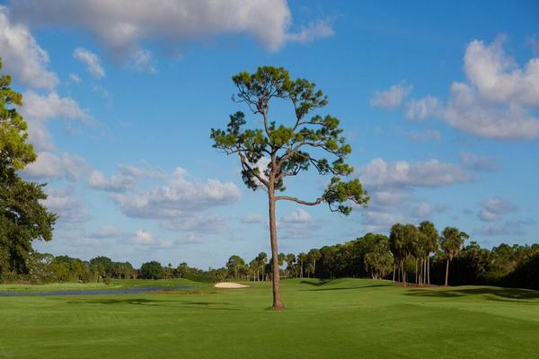 Palm Beach County Golf Course 561-624-5550