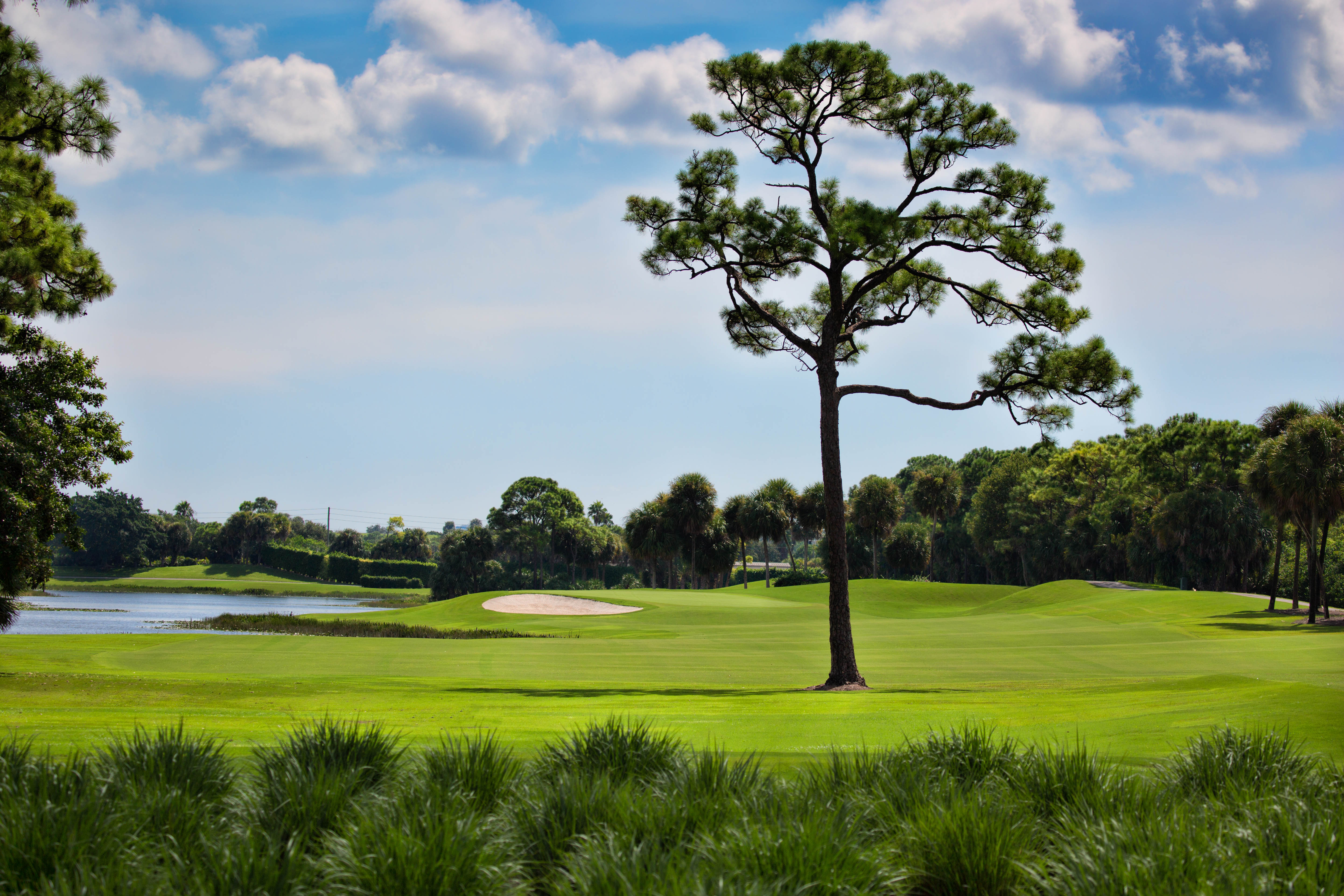 COUNTRY CLUB IN PINE AIR FLORIDA